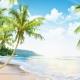 Destination: les Tropiques!